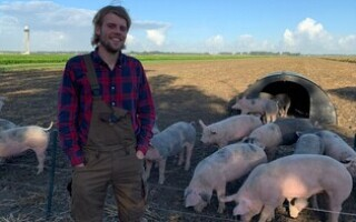 Аэропорт Амстердама нанял на работу свиней