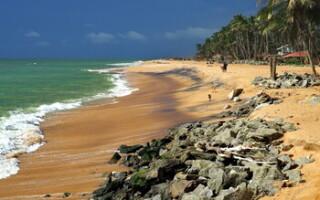 Шри-Ланка запустит для туристов из РФ акцию «Два билета по цене одного»