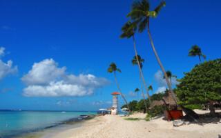 Туры в Доминикану подешевели на 40-60%