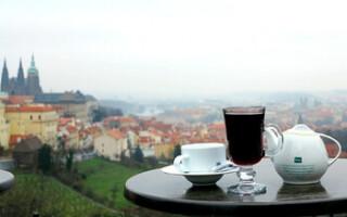В Чехии рестораны и кафе полностью возобновят работу 14 июня